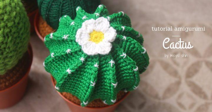 cactus / nopal amigurumi   Cactus, Nopal, Mercado libre mexico   380x720